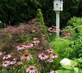 Placing Birdhouses In The Garden, Flowers, Gardening, Placing Birdhouses  Off The Ground Is