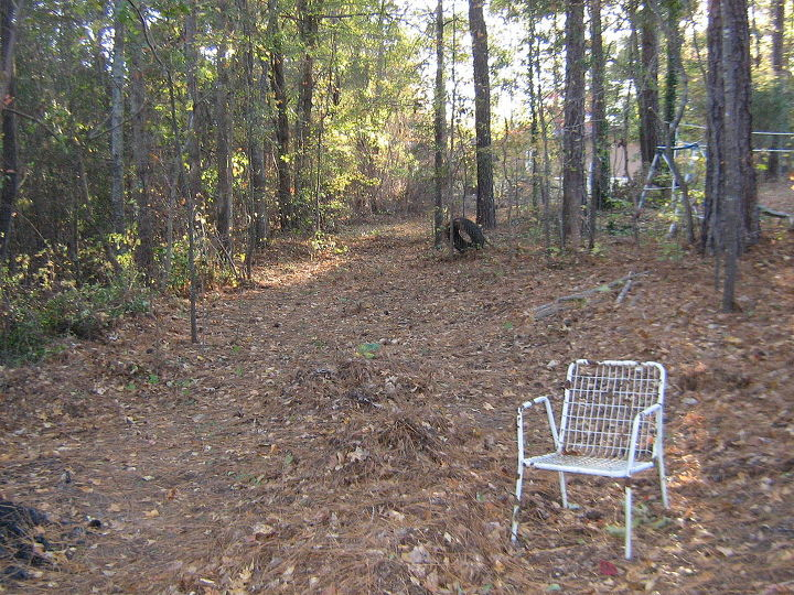 wooded slope needs attention, landscape, This is the beginning of the road at the beginning of the south property line This is actually the second landing To the left is a steep drop off To the right you go up the hill to my house