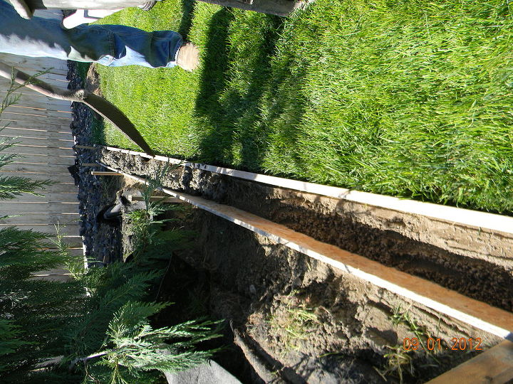 diy concrete landscape edging hometalk