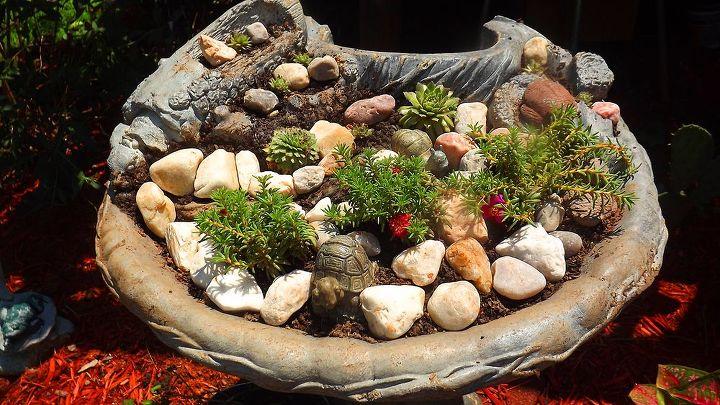 reusing an old outdoor broken fountain, gardening
