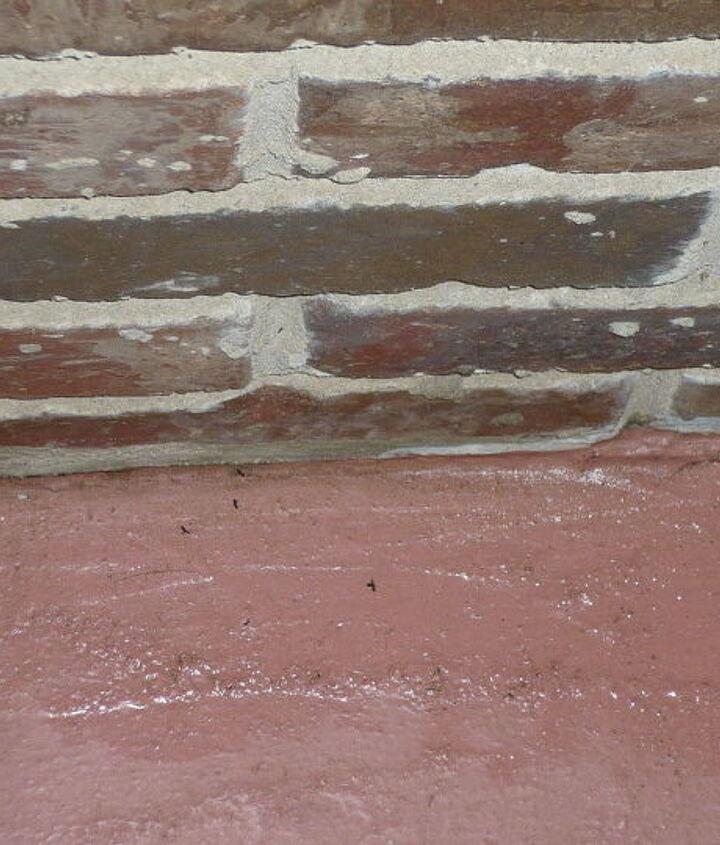 Ants lying in Windex.