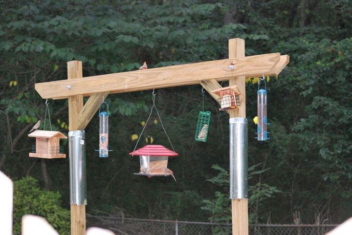 bird feeder made by son, gardening
