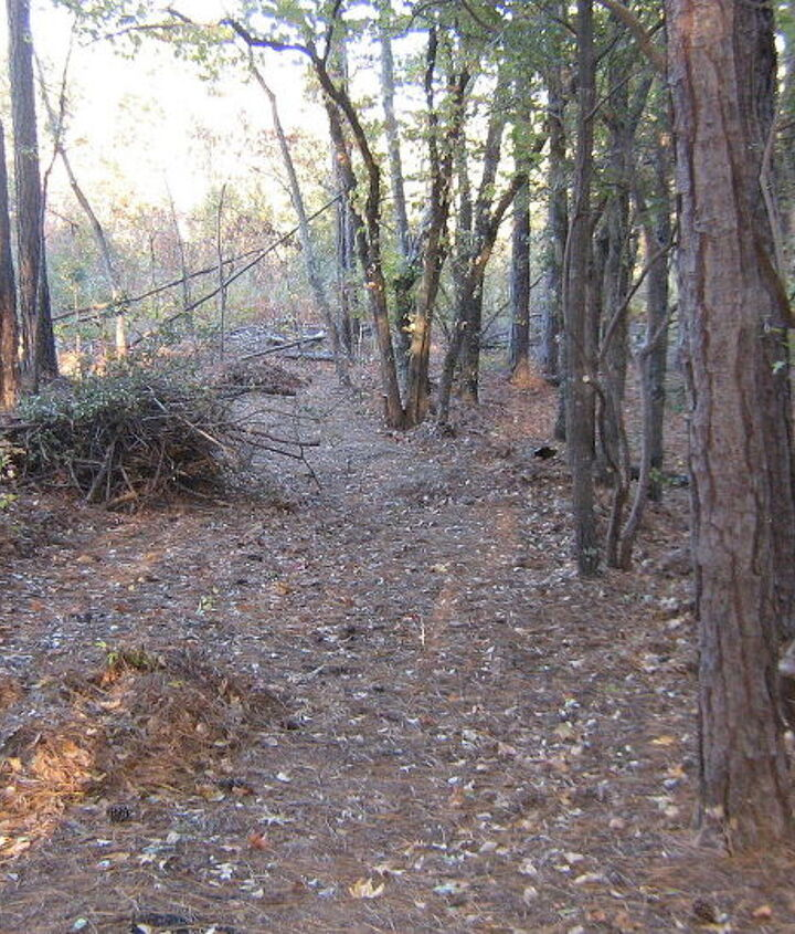 Another portion of the road we cut.  See the piles of debris that need burning!