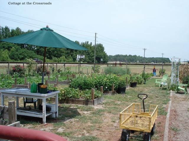 irrigation system in our garden, gardening, landscape
