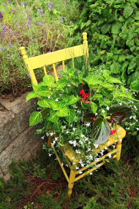 outdoor chair planter project, container gardening, gardening, repurposing upcycling