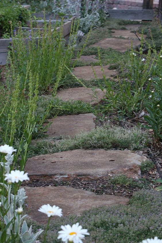 how to stain concrete safe and inexpensive, concrete masonry, landscape, If you would like to update a concrete garden path I have an easy and inexpensive solution