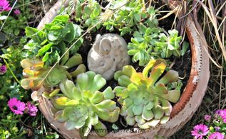 spring succulent container gardening in flower bed, container gardening, flowers, gardening, succulents, Filled the empty terra cotta pot with some succulents and spring bunny yard decor