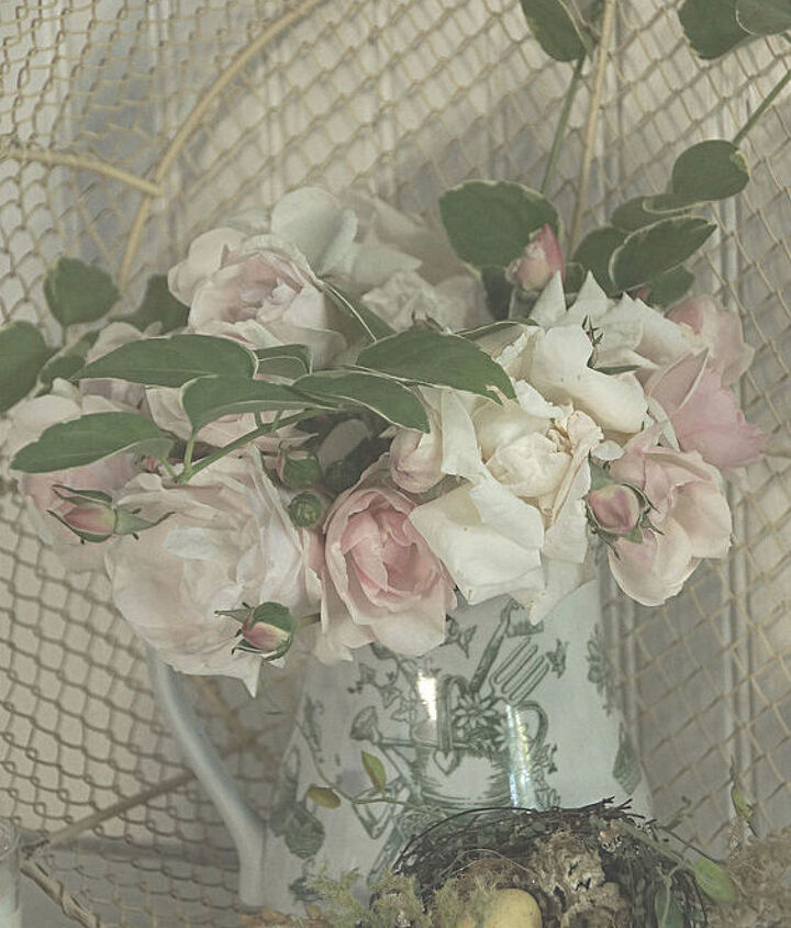 antique roses, gardening