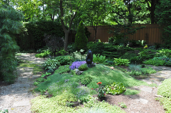 This small mounded planting includes a varied carpet of fragrant thymes.