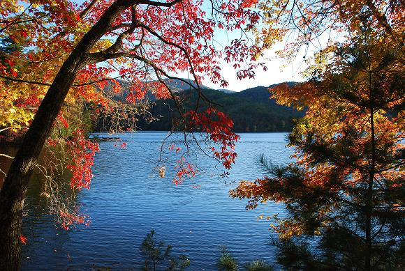break free of your color box let nature choose your color palette, home decor, Let s look at this photo of the beautiful fall scene and let me know you step by step how you can make it work in your home