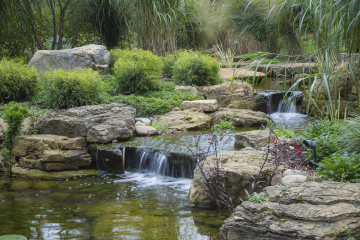 A waterfall helps to aerate the pond and drown out nearby traffic noise.