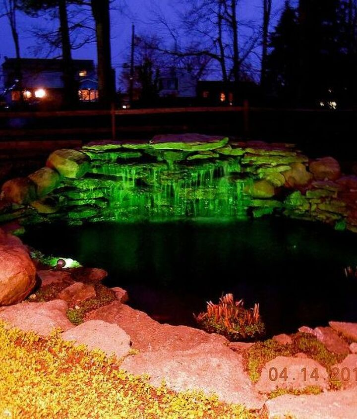 Our pond at night