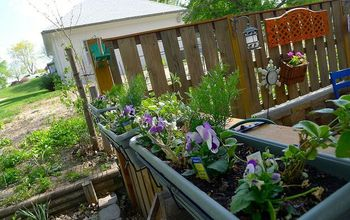 beginning to look like spring, container gardening, gardening, outdoor living, Window boxes on the fence