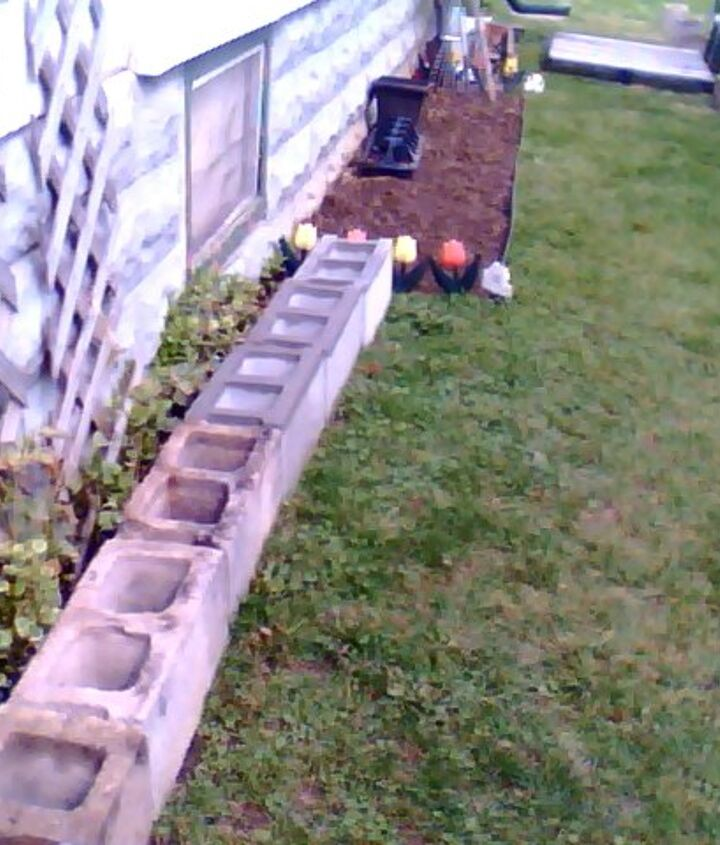 cinder blocks are placed in front of my vinca vine and i will probably plant my herbs and or peppers in it. cinder blocks are 1.41 at home depot