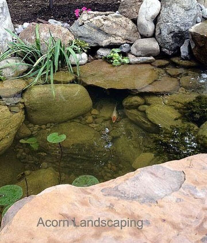 Backyard Ecosystem Fish Pond with LED lighting, Waterfalls, Stream in Greece NY by Acorn Landscaping of Rochester NY