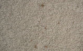 a chemical free way to get carpet stains out, cleaning tips, flooring, go green, We moved in to our house two years ago and these stains were there already They felt and looked like some sort of grease stain