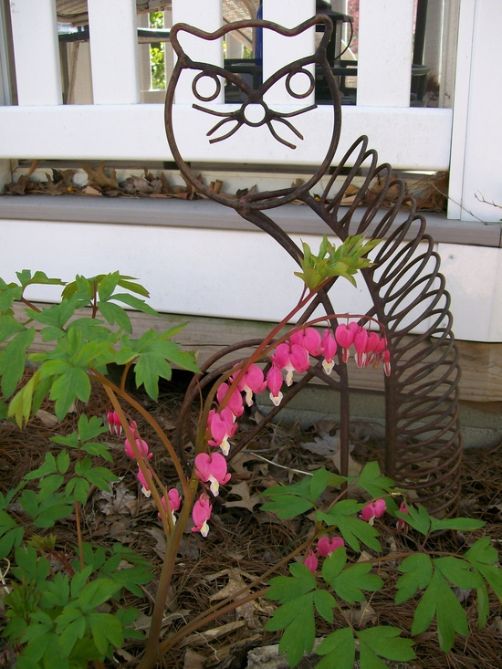 cat cd holder repurposed as a garden accent with bleeding hearts