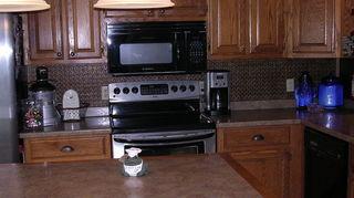kitchen back splashes, kitchen backsplash, kitchen design, WC 20 Antique Gold PVC Back Splash You Can see at this Home Talk Post