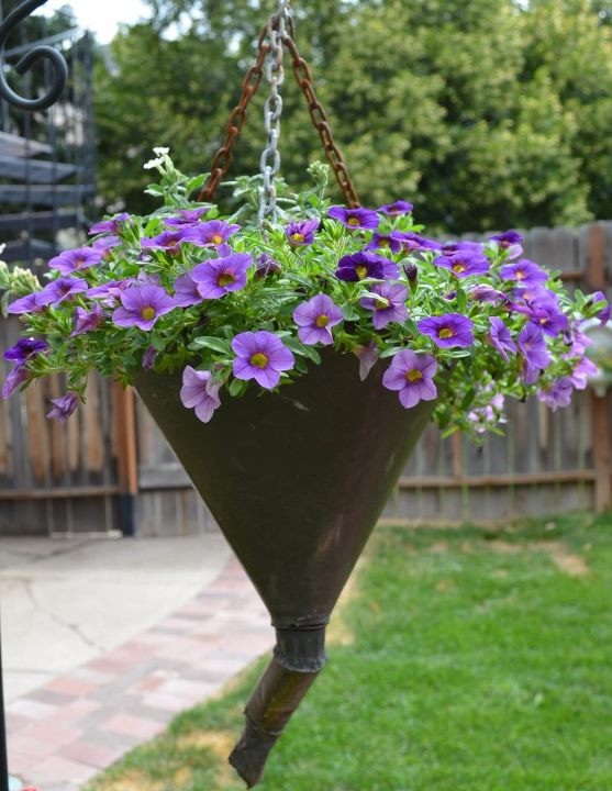 Marie's famous funnel of Million Bells. http://www.fleamarketgardening.org/2013/02/16/how-to-make-garden-containers-from-old-funnels/