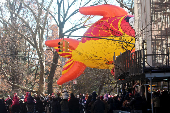 """An unidentified fish """"marches"""" (swims out of water) in Macy's 2013 Thanksgiving Parade. View Eight (at CPW). Image featured @  https://www.facebook.com/media/set/?set=a.582320998483944.1073741851.247917655257615&type=1"""