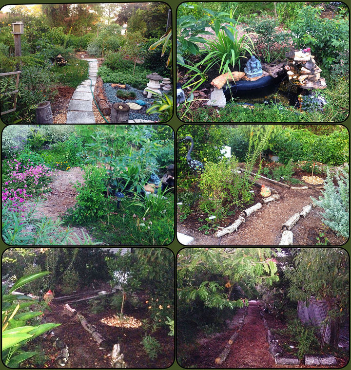in just 6 months, gardening, landscape, outdoor living, ponds water features