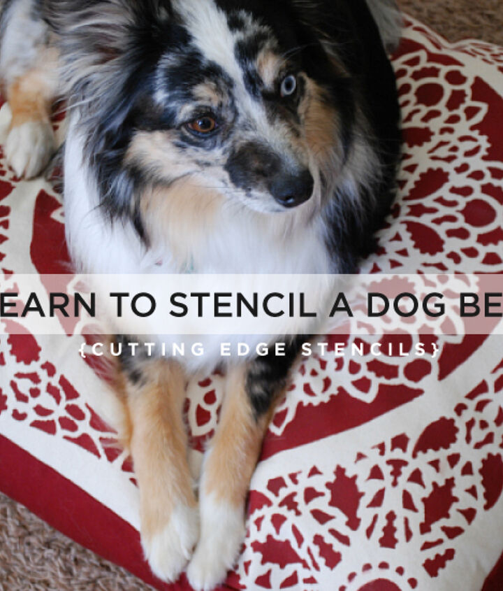 learn how to stencil a dog bed, crafts, painting