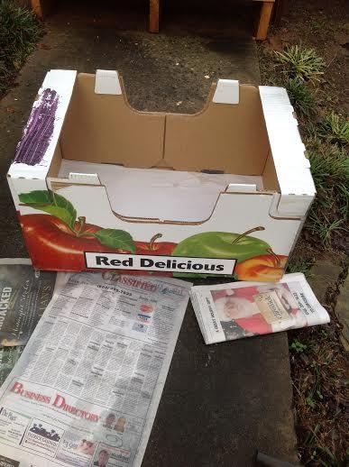 box to bed, crafts, pets animals, repurposing upcycling, Free box
