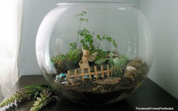 What is It About These Tiny Little Fairy Gardens That is so Appealing?