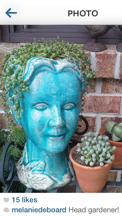 Would Love To A Head Planter But Where