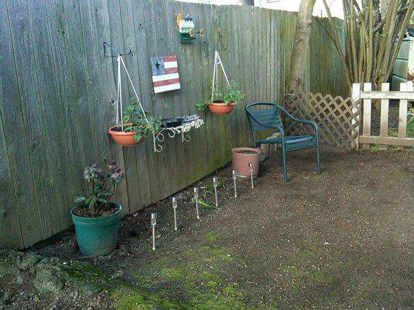 our one year old little shady patio garden, gardening, outdoor living, repurposing upcycling, The beginning 2012