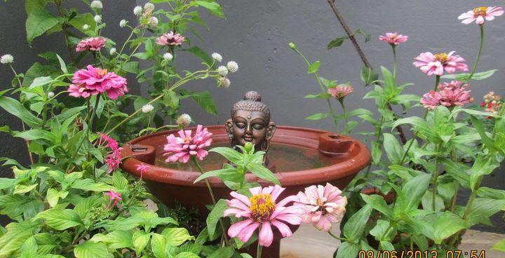 outdoor living, flowers, gardening