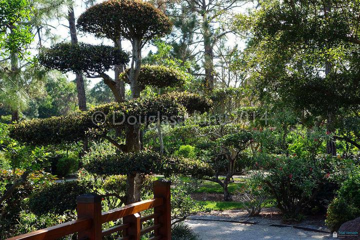 a visit to morikami gardens, gardening, outdoor living