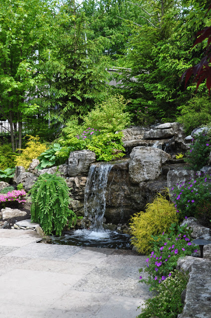 These homeowner took advantage of their sloped backyard to install a waterfall.