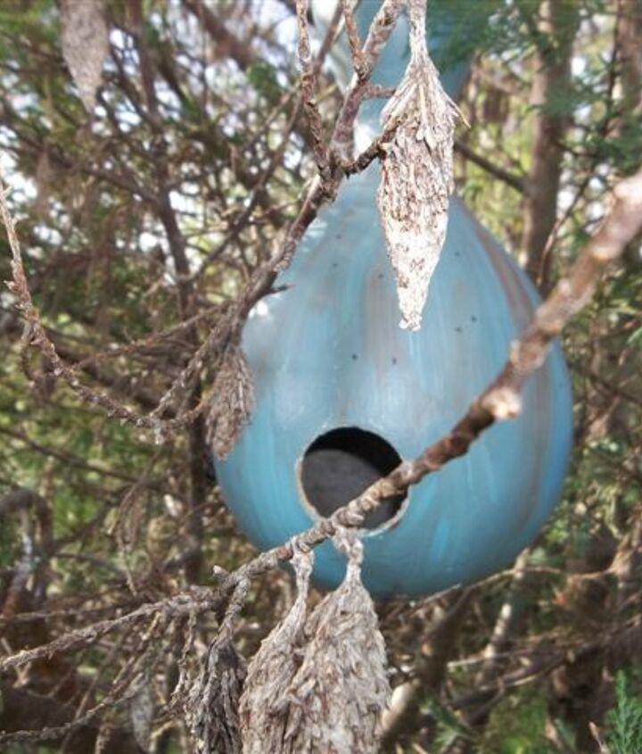 birdhouse gourds, gardening, repurposing upcycling