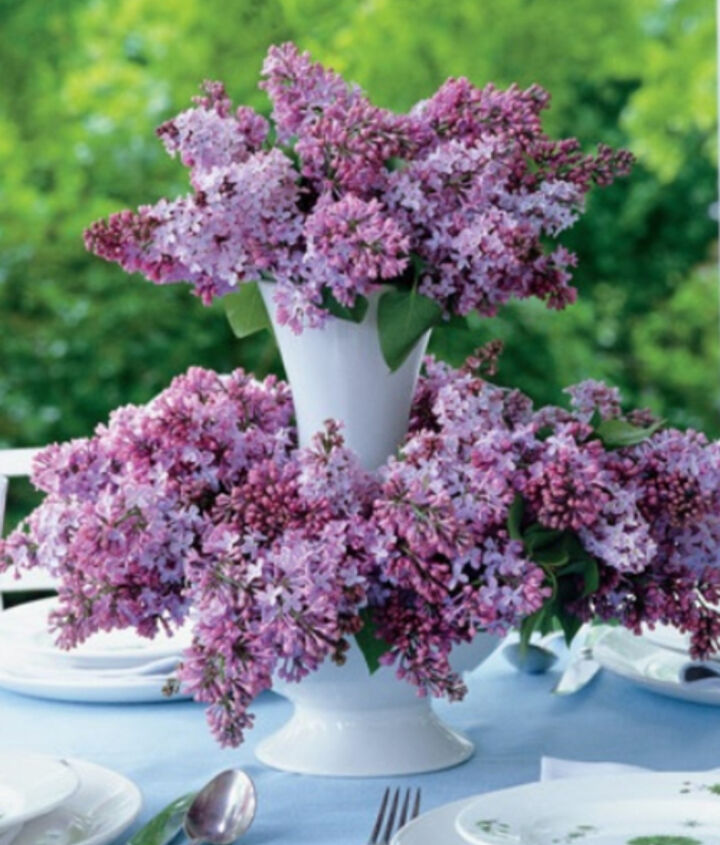 Lilacs make great centerpieces and they have a wonderful fragrance.