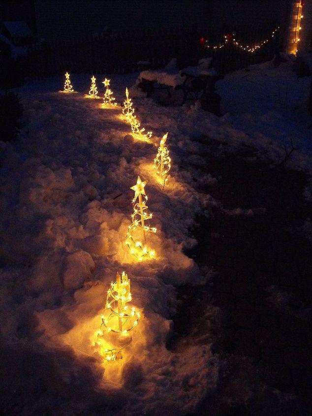 Tree lights that line the path around my house.