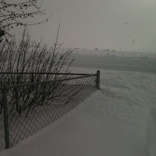 "This is the 4' chain link fence at the corner of the front yard.  Only about 14"" is showing."