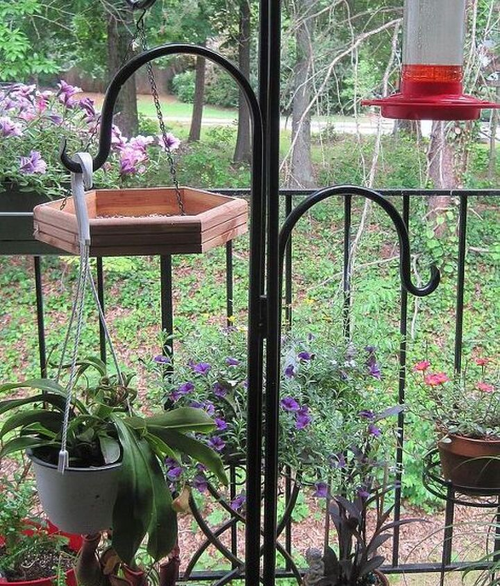 A Shepards hook holds both bird-feeders and plants on my balcony.