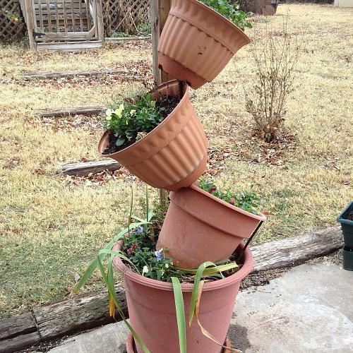 bigger pots tilted, container gardening, gardening, The bigger pots on the tilt