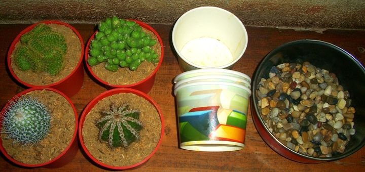 you just simply need cacti in planters, used paper cups and small river stones