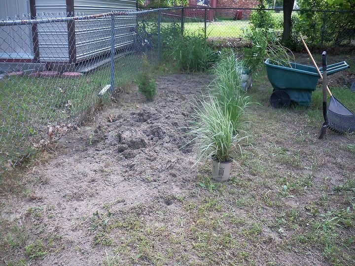 opposite side of yard, putting in pampas grass along fence