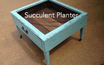Succulent Plant Holder