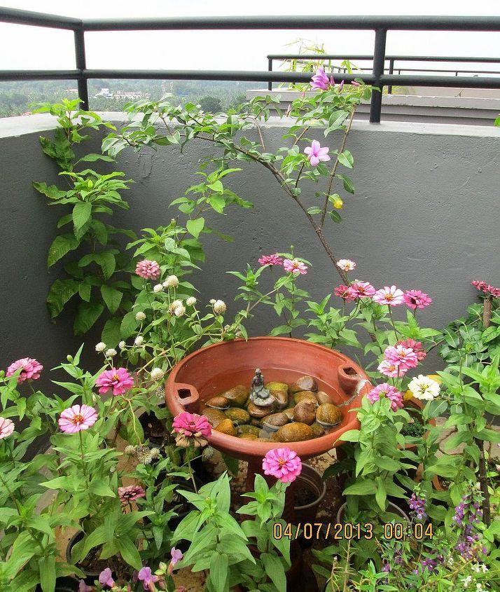 a lil mermaid in my birdbath, gardening, outdoor living