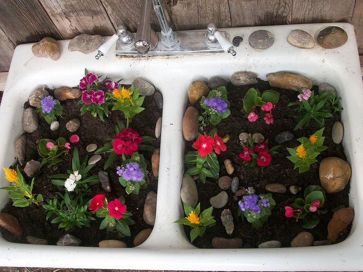 My new spring flowers- -used an old sink as planter. Used my rock collection and placed them around.