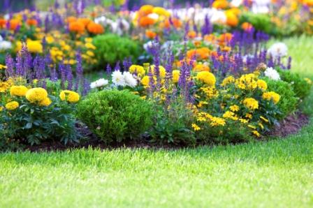 five garden tips to wow memorial day guests, container gardening, flowers, gardening, perennials, succulents