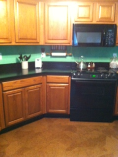 painted kitchen counter tops and paper bag floors, countertops, flooring, kitchen design