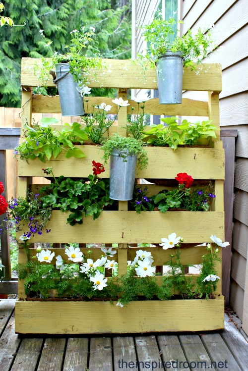 From Pallet to Privacy Screen Planter! | Hometalk