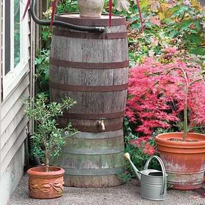 rain barrel idea, gardening, go green, outdoor living