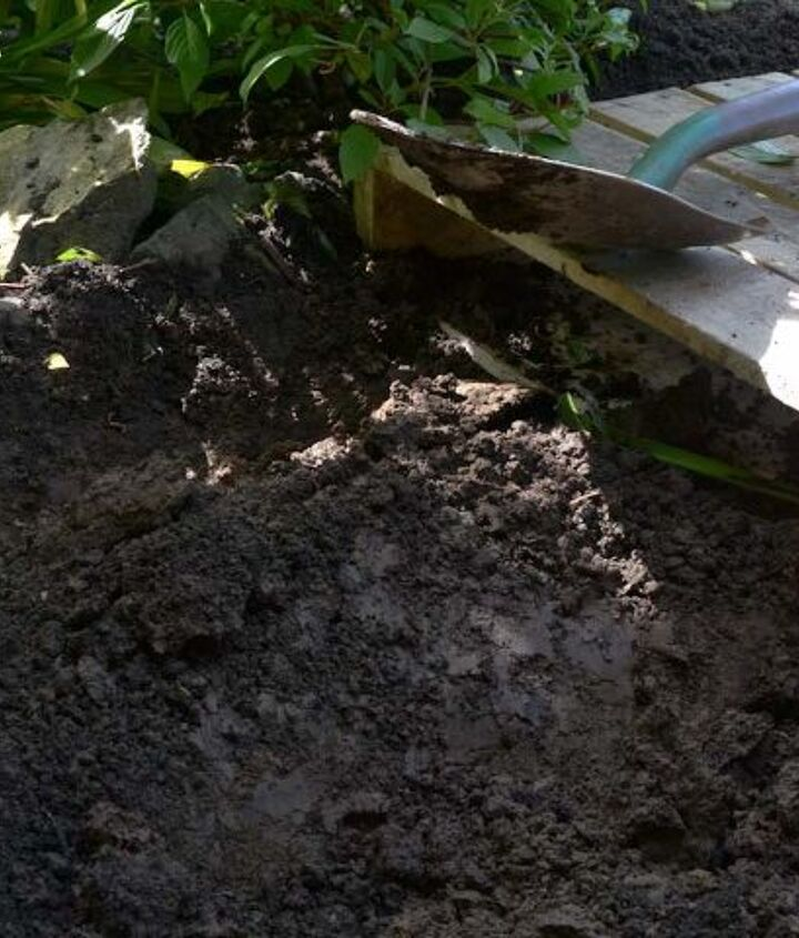 Levelling the soil really well took time but was well worth it.