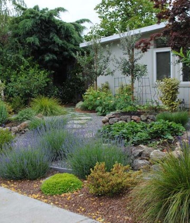 A lawn-less front yard designed by Rebecca Sweet of Gossip in the Garden.